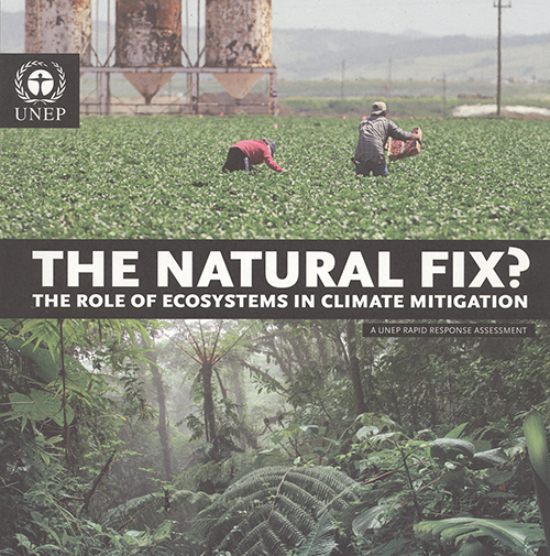 NATURAL FIX ROLE ECOSYSTEMS