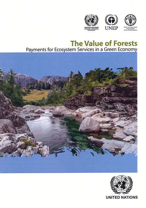 VALUE FORESTS PAYMENT ECOSYST