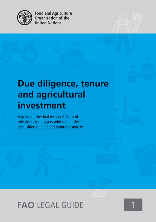 DUE DILIGENCE TENURE & AGRICULTURA