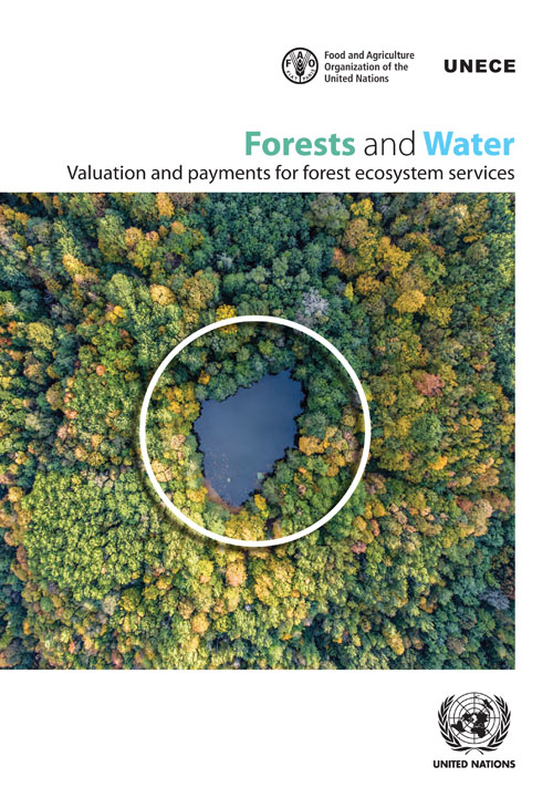 FORESTS AND WATER: VALUATION