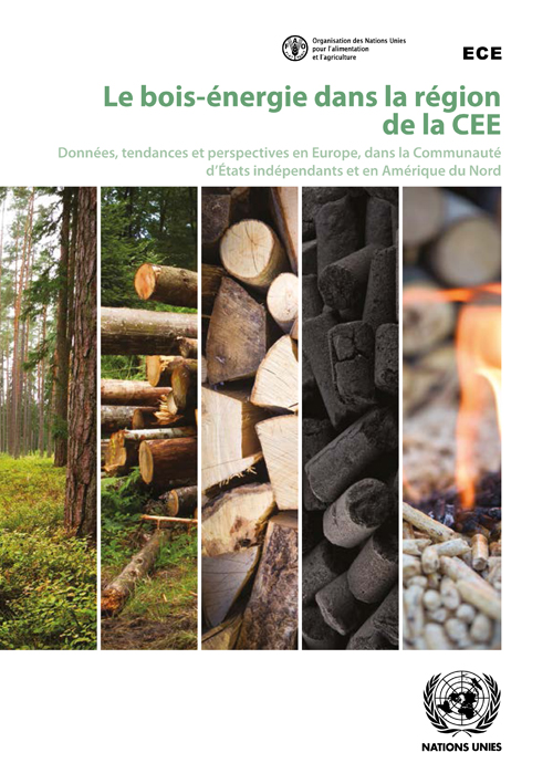 WOOD ENERGY IN THE ECE REGION (F)