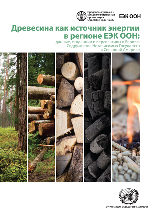 WOOD ENERGY IN THE ECE REGION (R)