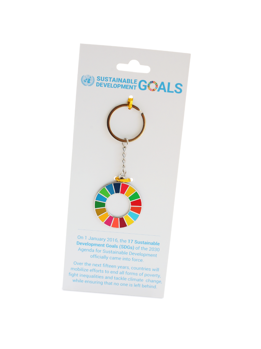 An image of a keychain with the SDG multicoloured wheel. Hard enamel finish.