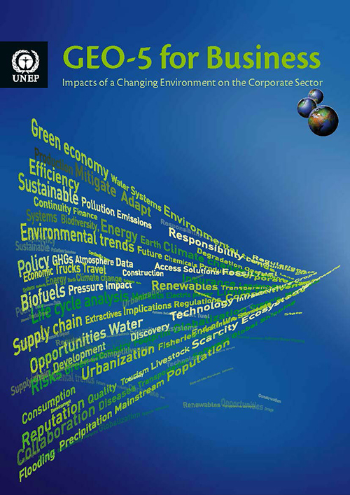 GEO-5 FOR BUSINESS IMPACTS ENVIRO