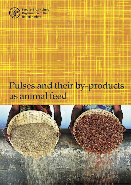 PULSES BYPRODUCTS ANIMAL FEED