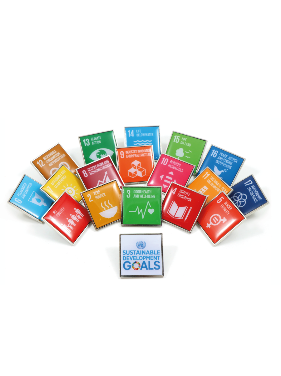 An image of 18 one square inch pins featuring the 17 SDG icons along with one featuring the SDG wheel.
