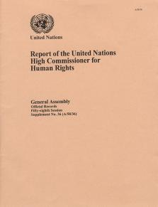 GAOR 58TH SUPP36 OHCHR RPT