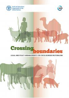 CROSSING BOUNDARIES: LEGAL POL