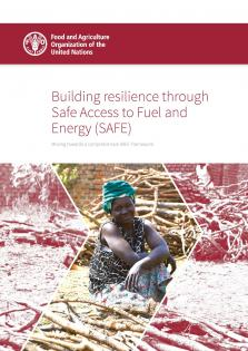 BUILD RESILIENCE SAFE ACCESS