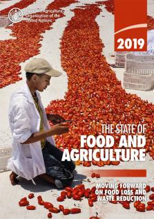 STATE OF FOOD & AGRICULTURE 2019