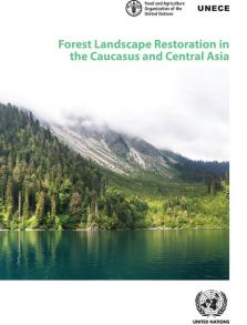 FOREST LANDSCAPE RESTORATION
