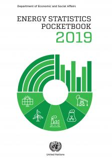 ENERGY STATISTICS POCKETBK 2019