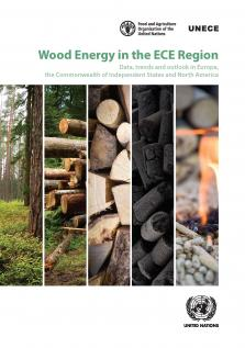 WOOD ENERGY IN THE ECE REGION