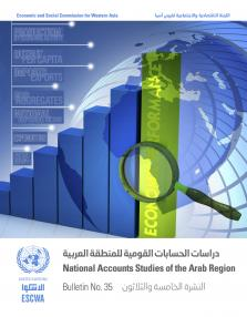 NATL ACCTS STUDIES ARAB REG #35