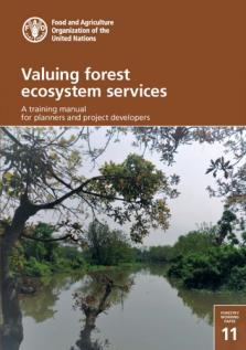 VALUING FOREST ECOSYSTEM SERVICES