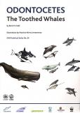 ODONTOCETUS THE TOOTHED WHALES