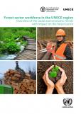 FOREST SECTOR WORKFORCE UNECE