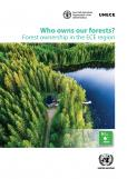 WHO OWNS OUR FORESTS? FOREST OWNER