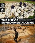 THE RISE ENVIRONMENTAL CRIME