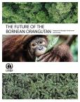 THE FUTURE BORNEAN ORANGUTAN