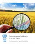 PATHWAYS TOWARDS FOOD SECURITY